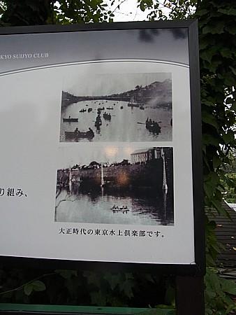 東京水上倶楽部