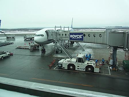 ANAでいく札幌旅行