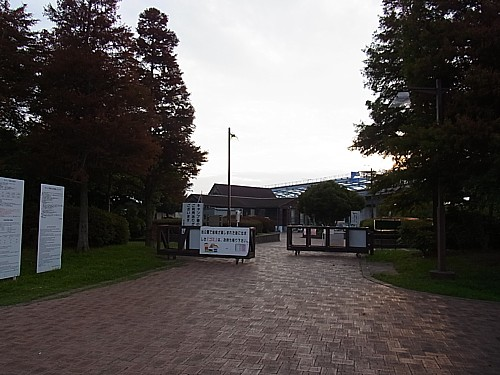 若洲キャンプ