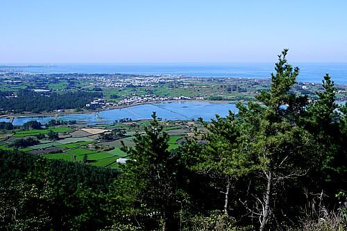 展望台から風景