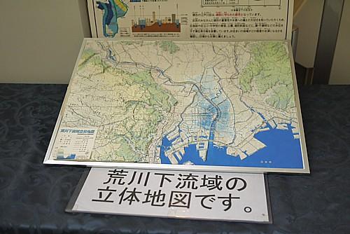 荒川下流域の立体地図