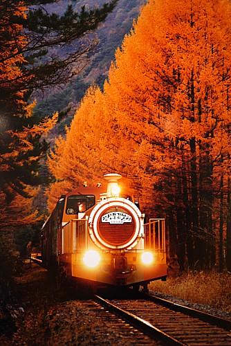 チョンソン風景列車(ブンギョンヨルチャ)
