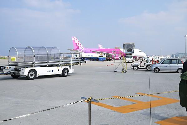 沖縄のLCCターミナルは凄かった