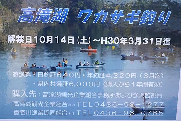 千葉 高竜湖(たかたきこ)
