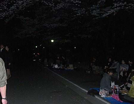 上野公園 花見 2011