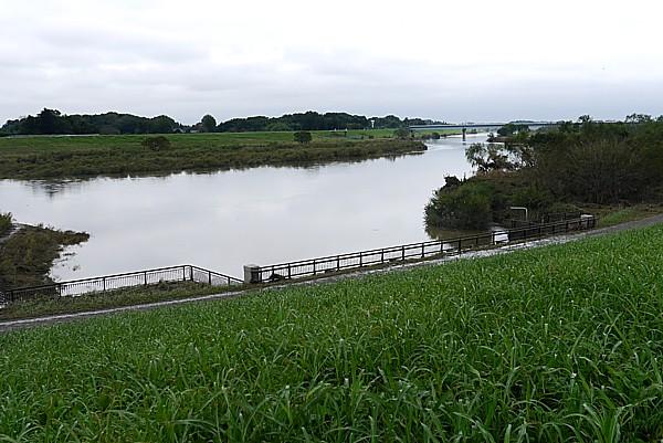 江戸川放水口